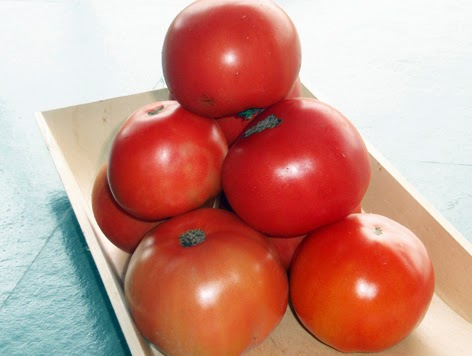 Tomates caseros