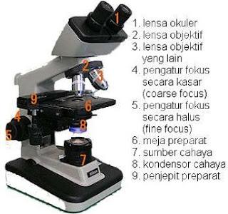cara menggunakan mikroskop binokuler,cara menggunakan mikroskop cahaya yang baik dan benar,cara menggunakan mikroskop beserta gambarnya,cara menggunakan mikroskop listrik,