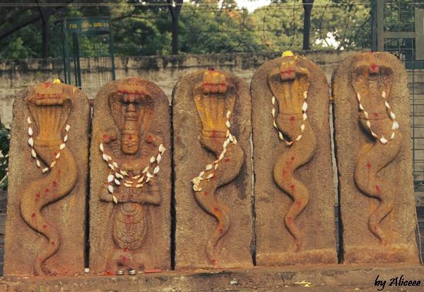 Bull-Temple-Bangalore-India-Impresii
