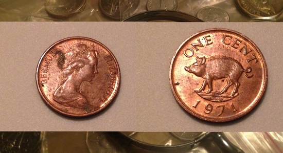 Copper Hog Penny