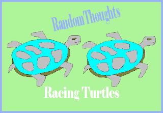 The Racing Turtle