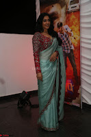 Regina Casandra in Lovely Beautiful saree Stunning Pics ~  Exclusive 43.JPG