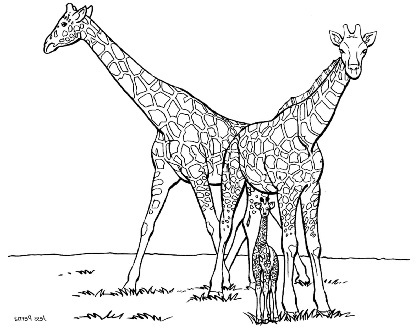 click the giraffe mouse and elephant coloring giraffe 7