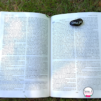 Scripture Rocks