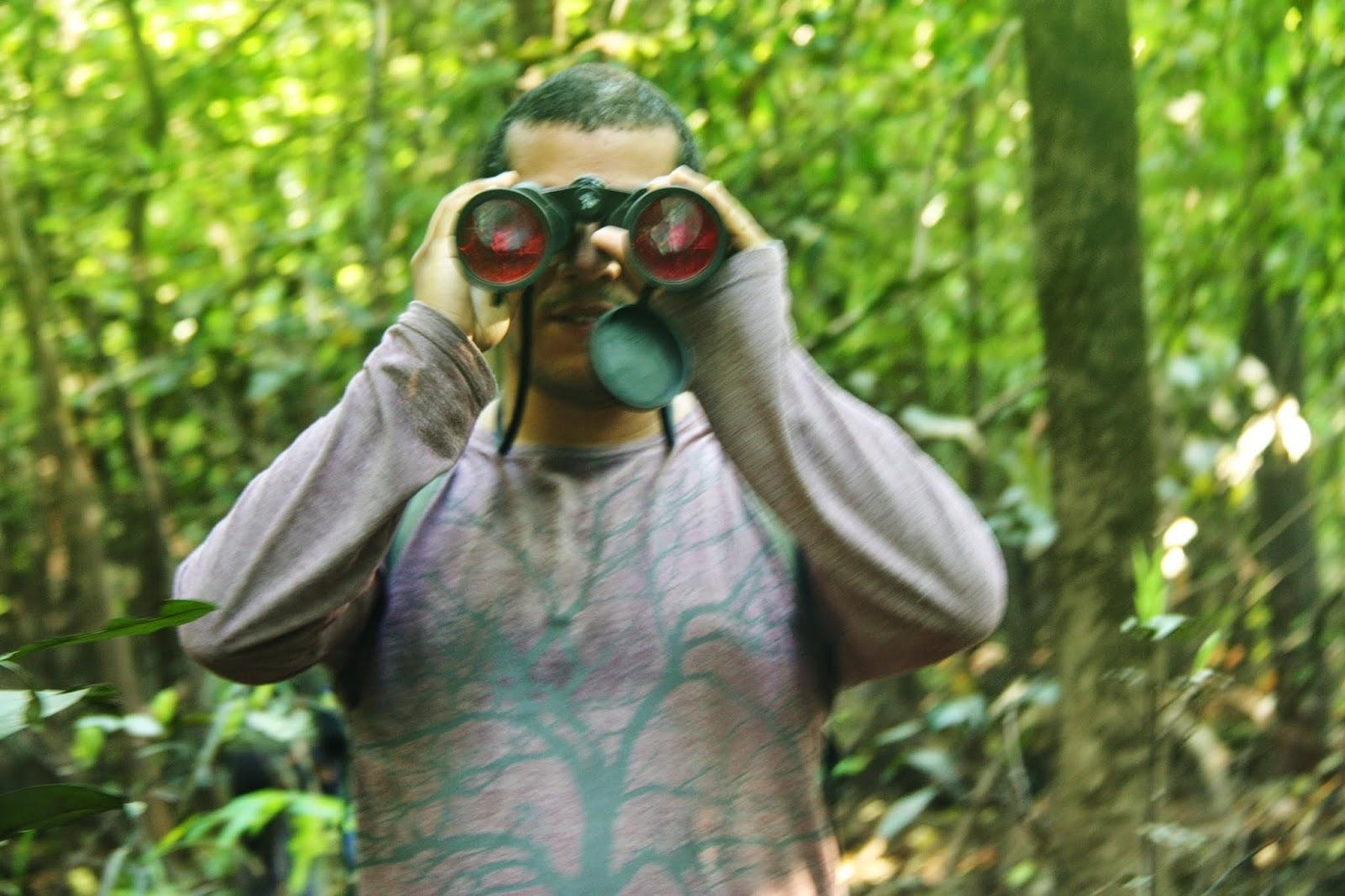 Trekking pela floresta amazônica, em Mamirauá.