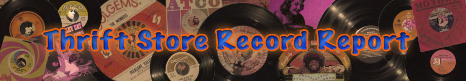 Thrift Store Record Report