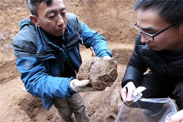 2,300-year-old tomb discovered in central China's Hubei