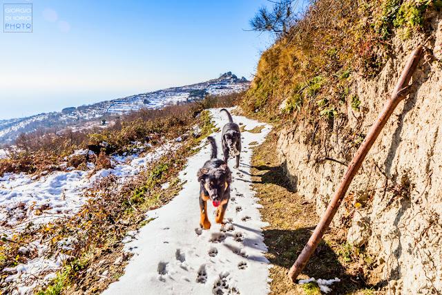 Neve a Ischia, Monte Epomeo innevato, Foto Ischia, Neve a Ischia 2017, Comune di Fontana, Eremo di San Nicola innevato, Ischia imbiancata,