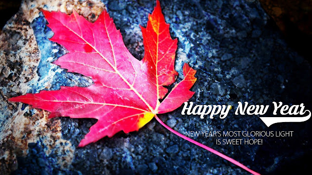 Happy New Year 2017 Desktop Pictures