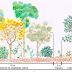 [DOWNLOAD] Artigo sobre Restauração Ecológica de Nativas