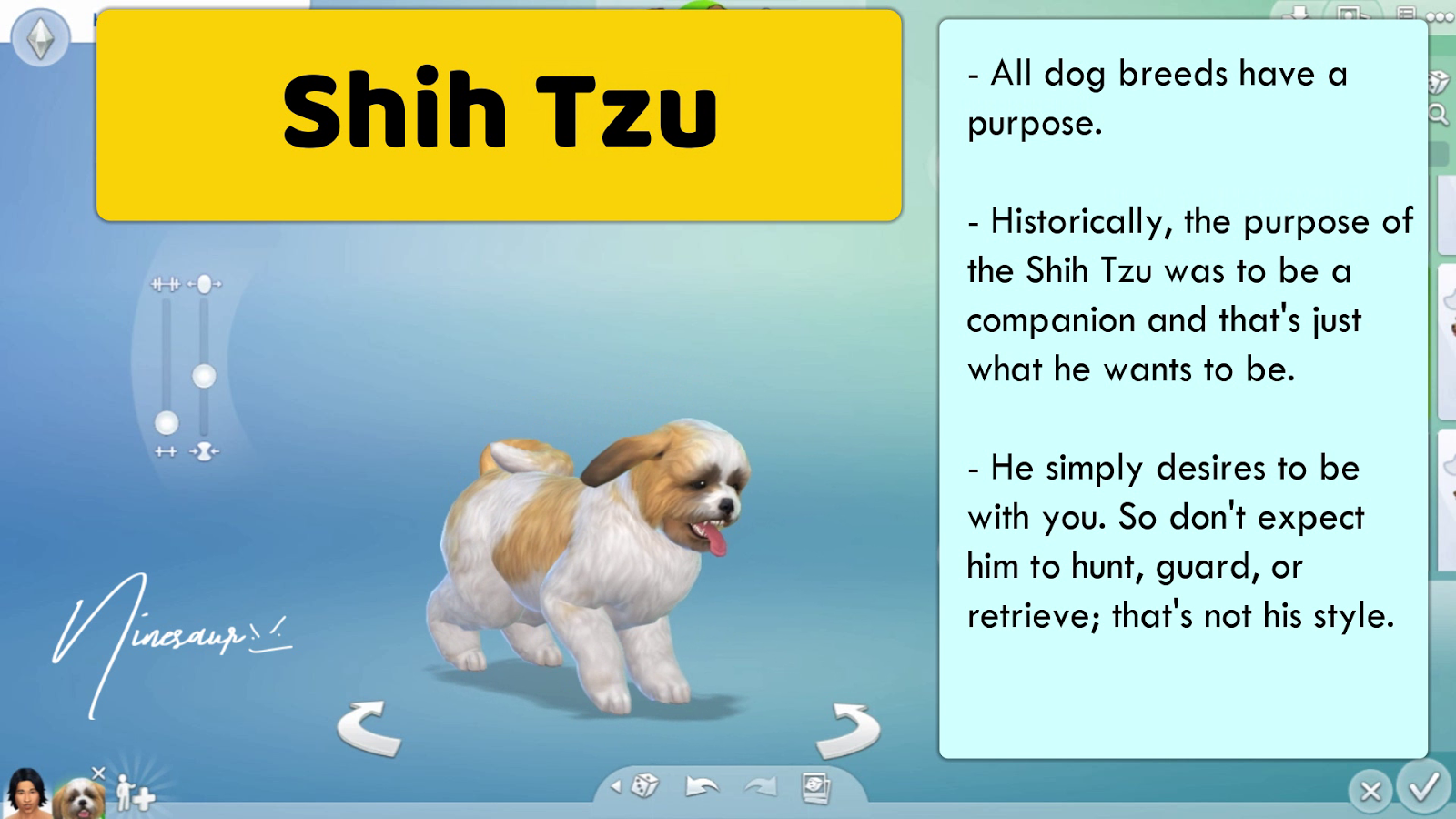 Ninesaur 38 Small Dog Breeds The Sims 4