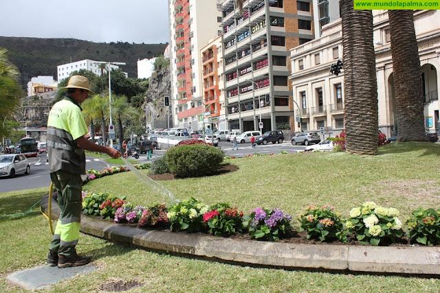 El Ayuntamiento de Santa Cruz de La Palma engalana la ciudad con más de un millar de flores con motivo de la Semana Santa