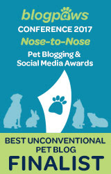 Best Unconventional Pet Blog Finalist