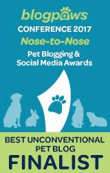Best Unconventional Pet Blog Finalist