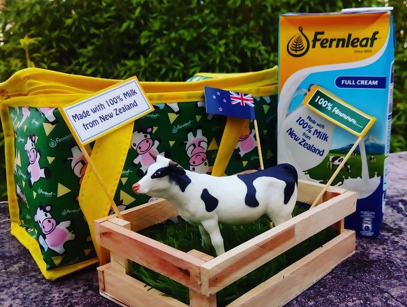 Nikmati Susu Fernleaf UHT 100% Segar Dari Ladang New Zealand