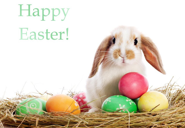 Easter-Bunny-HD-Wallpapers