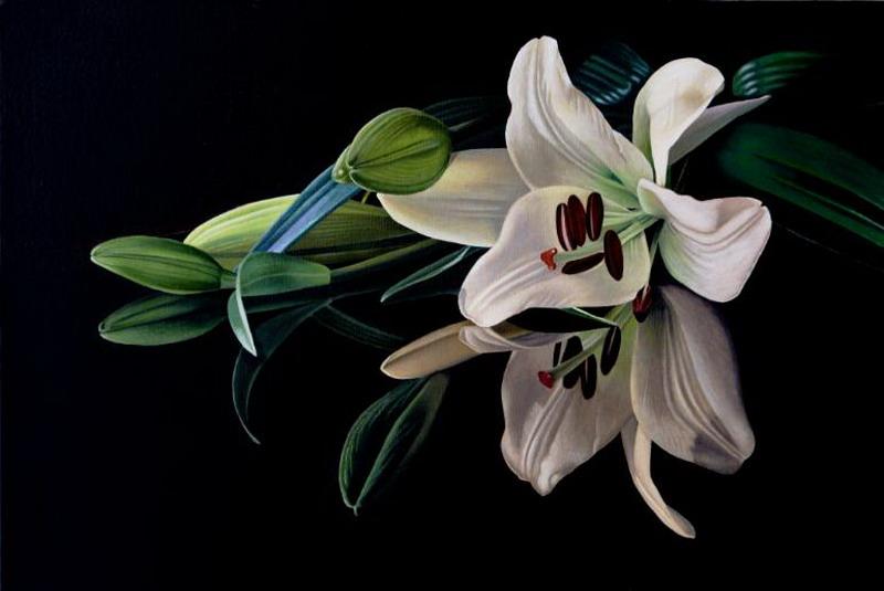 Imágenes Arte Pinturas: Bodegones Al Óleo Con Flores