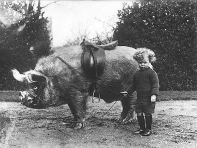 Divertidas fotografías antiguas de niños con su mascota