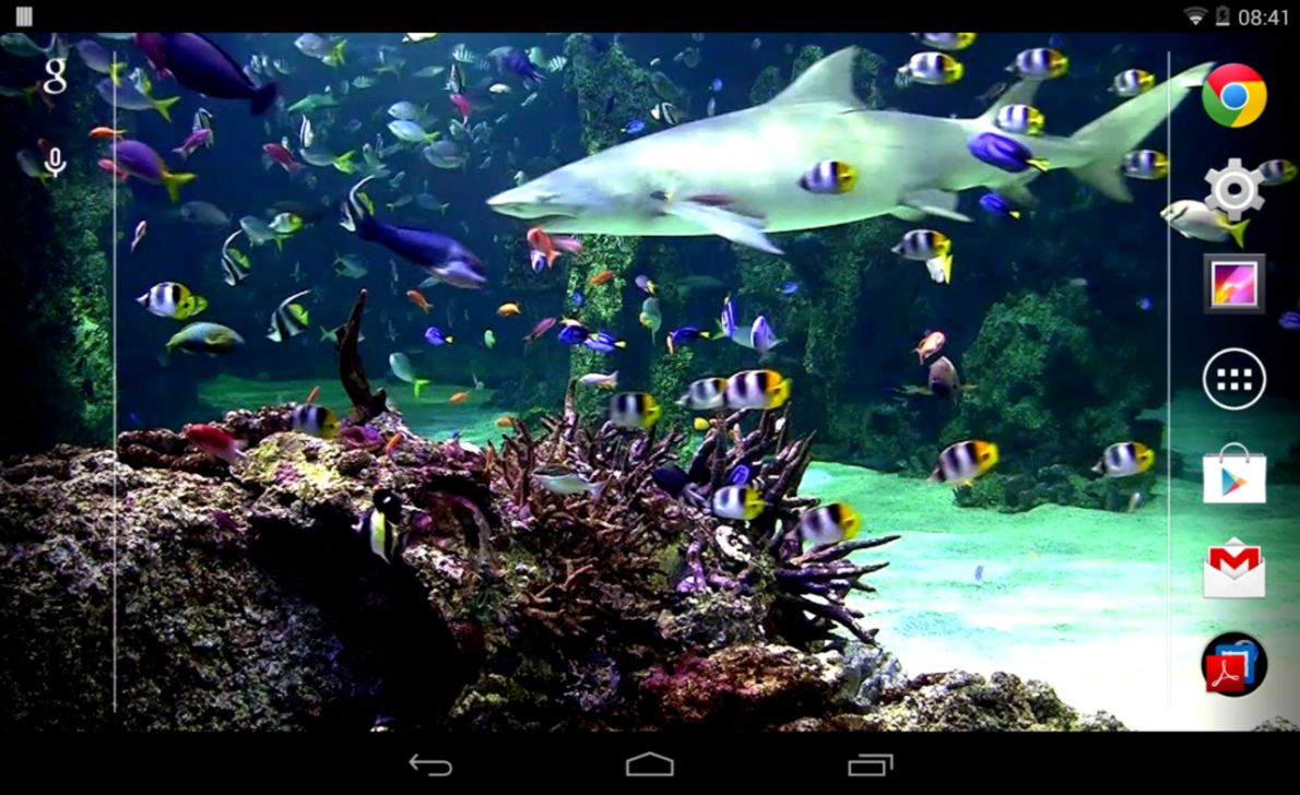 Aquarium live wallpaper Free Android Live Wallpaper download Appraw