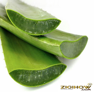DISCOVER HOW TO USE ALOE VERA & ITS WONDERS 3