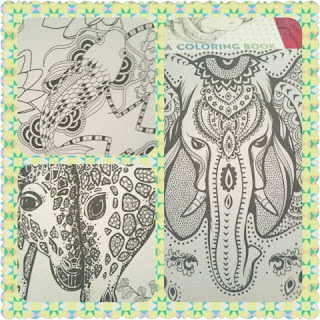 WILD POCKET BOOK OF COLORING collage 2