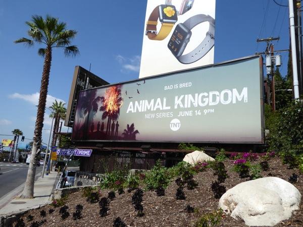 Animal Kingdom TV remake billboard