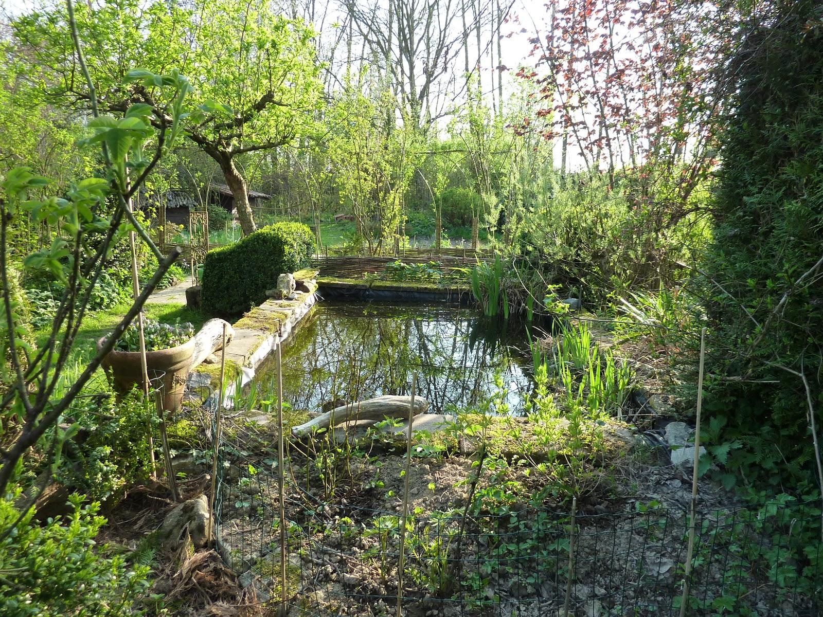 Le jardin de brigitte alsace ambiance d 39 avril - Les jardins d alsace ...