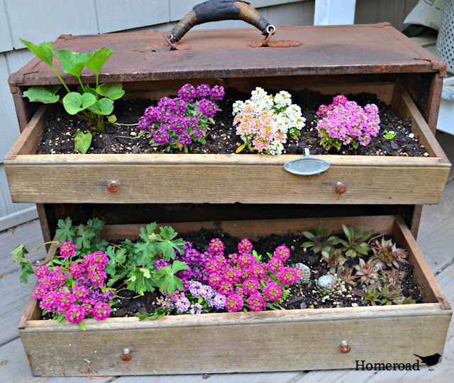 Fill a rusty vintage toolbox with dirt and flowers