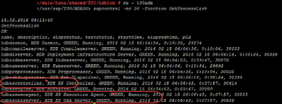 SAP HANA XS Advanced Installation through resident hdblcm (Command based)
