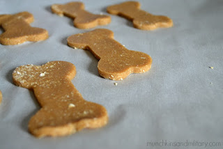 Top 5 Homemade Pet Treats