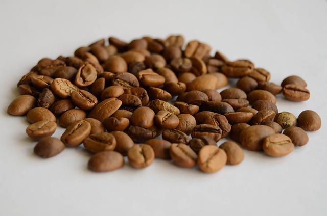 Ilustrasi biji kopi. Sumber : wikipedia.