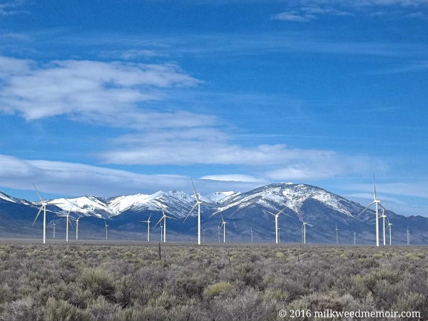 Windmills rise out of the sagebrush of Pattern Energy's Spring Valley wind farm in Nevada. Behind rise the snow-capped Taylor Peak in the background.