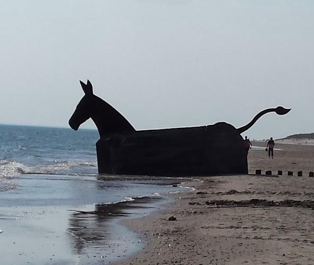 Tolle Erlebnisse in und um Blavand: Ausflugstipps für Familien. Am Strand von Hvidbjerg findet Ihr zudem außergewöhnliche Maultiere.