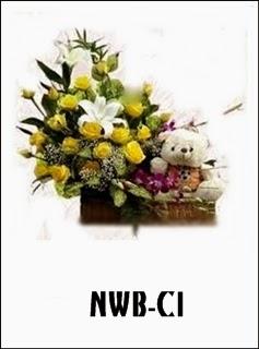 NWB-C1