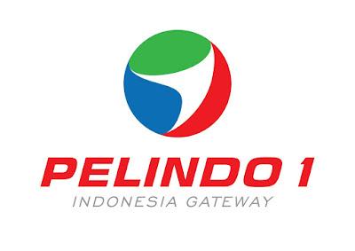 BUMN PT Pelindo I