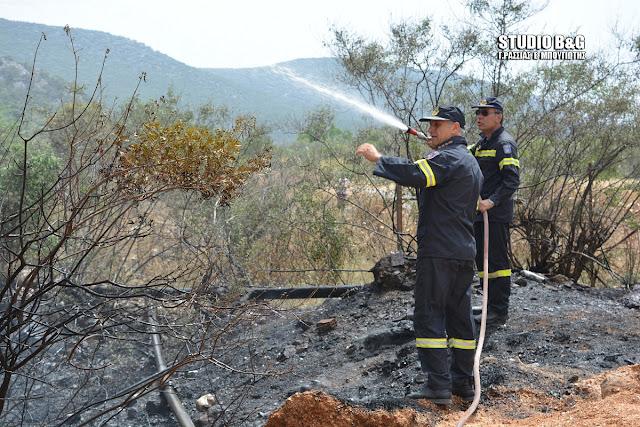 Αργολίδα: Πυρκαγιά στα Καρναζέικα