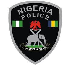 Nigerian Woman arrested for Raping her Pregnant Neighbor