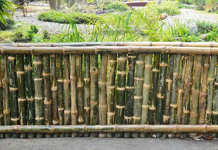 40 Ide Desain Pagar Bambu Unik Sederhana Rumahku Unik