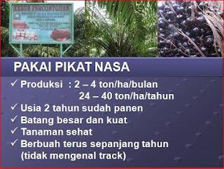 AGEN NASA DI Ujung Batu Rokan Hulu - TELF 082334020868