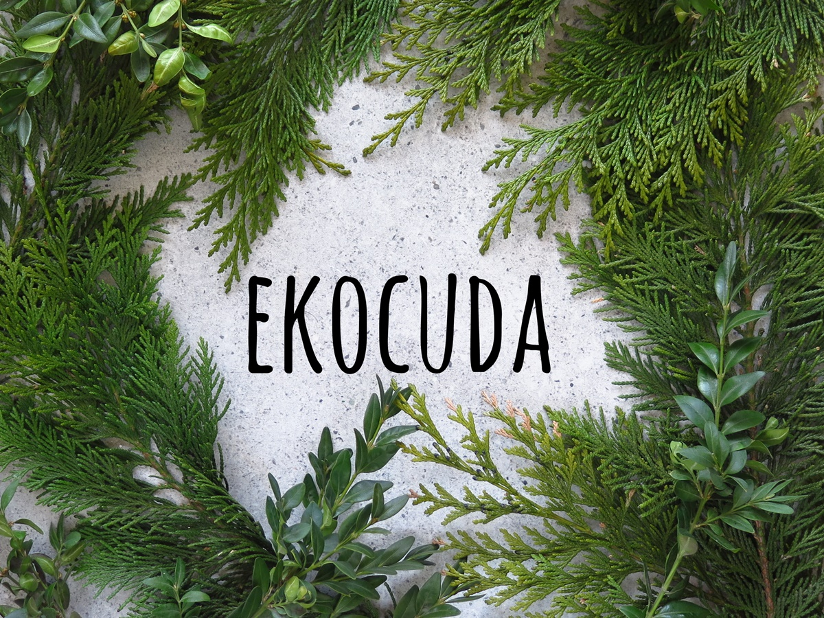 Kupiłam tylko jedną rzecz! Ekocuda - targi kosmetyków naturalnych w Gdańsku - relacja i planowanie zakupów