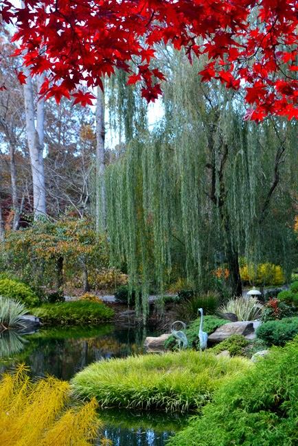 Wanderlust ATLANTA: Gibbs Gardens' Japanese Maples