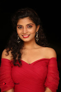 Actress Bindu Pictures in Red Dress at Attarillu Movie Press Meet 0002.JPG