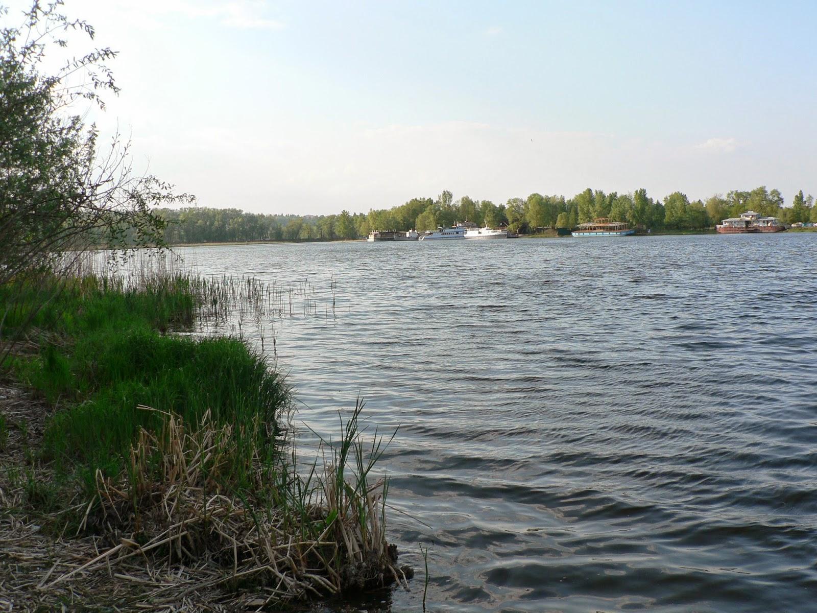 Галерный-Залив
