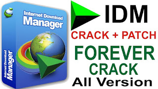 Download IDM 6.29 Build 01 Crack Free Full Version