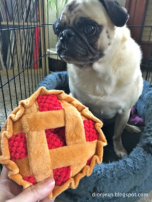 Liam the pug with his pie toy