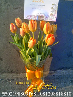 jual bunga tulip, rangkaian bunga tulip, bunga tulip ulang tahun, toko bunga di jakarta, karangan bunga tulip, bunga tulip ungu