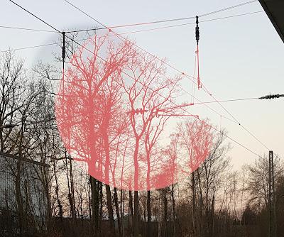 Leitungen und Zweige