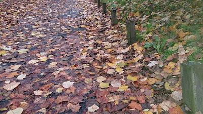 juegos de otoño