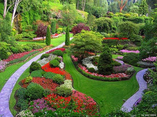 Konsep taman rumah dengan taman penuh bunga