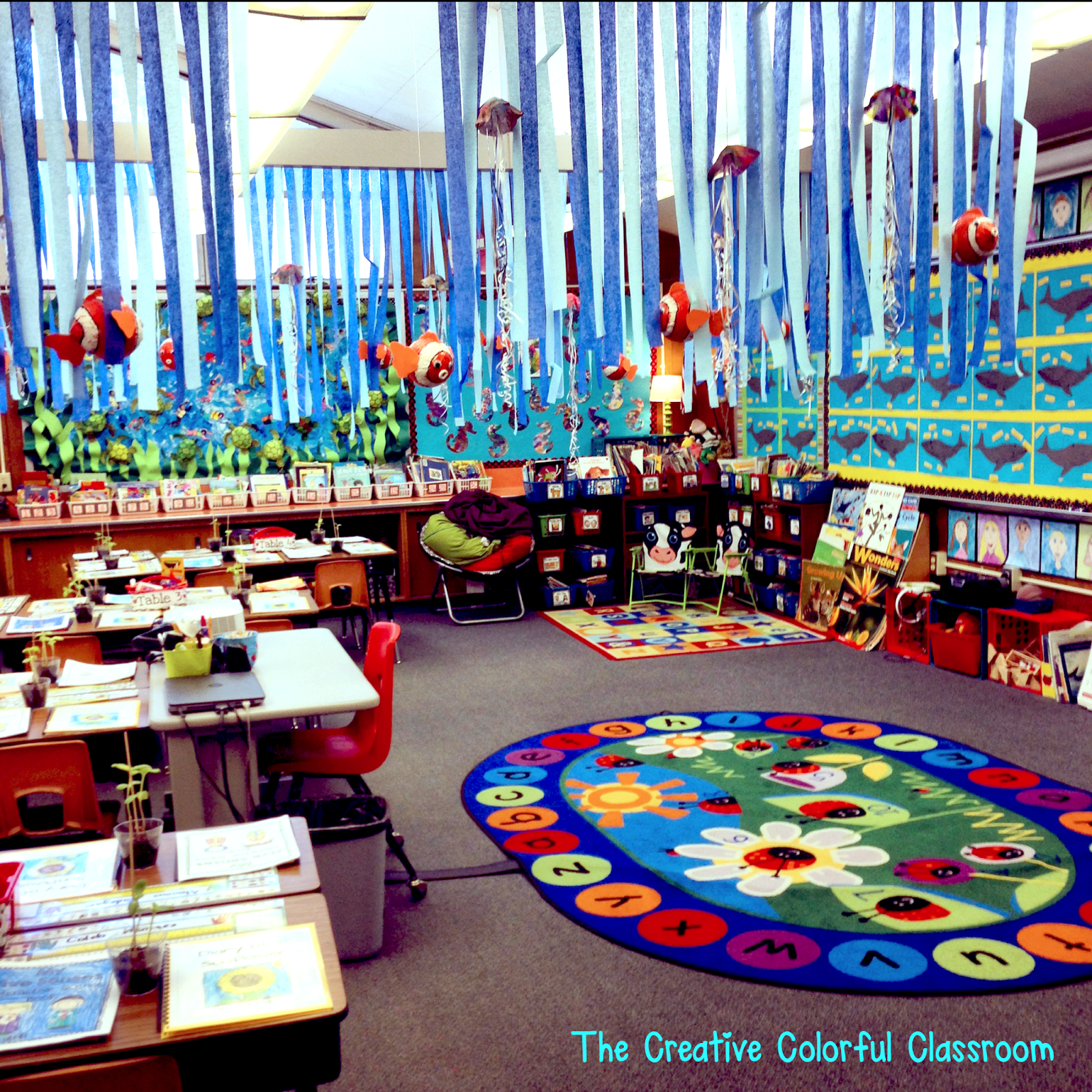 Classroom Decoration Colorful ~ The creative colorful classroom open house and our ocean